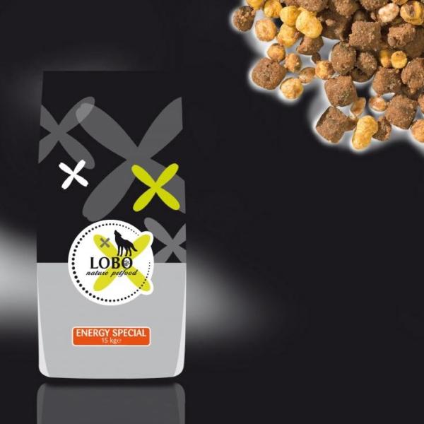 LOBO Energy special